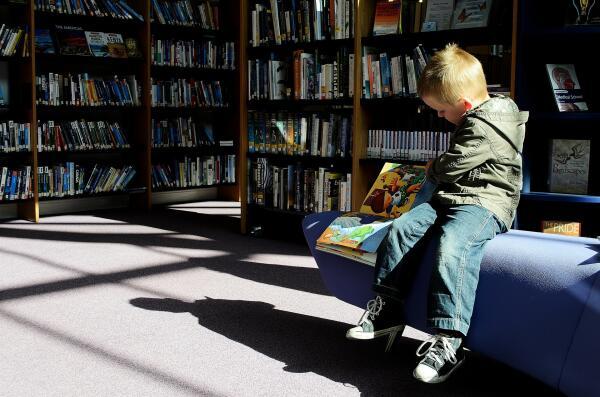 Дети подземелья, или Где прячется хорошее образование?
