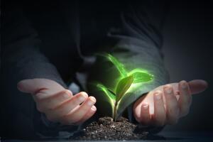 Борцы за экологию - что это за профессия?