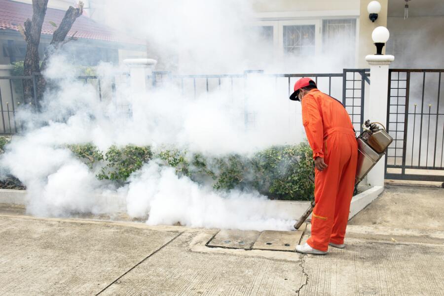 К современным инсектицидам предъявляются иные требования, чем к ДДТ