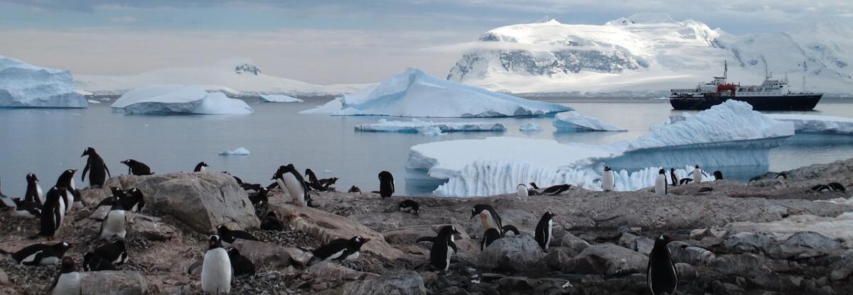 Яд растворился по планете, вплоть до Антарктиды