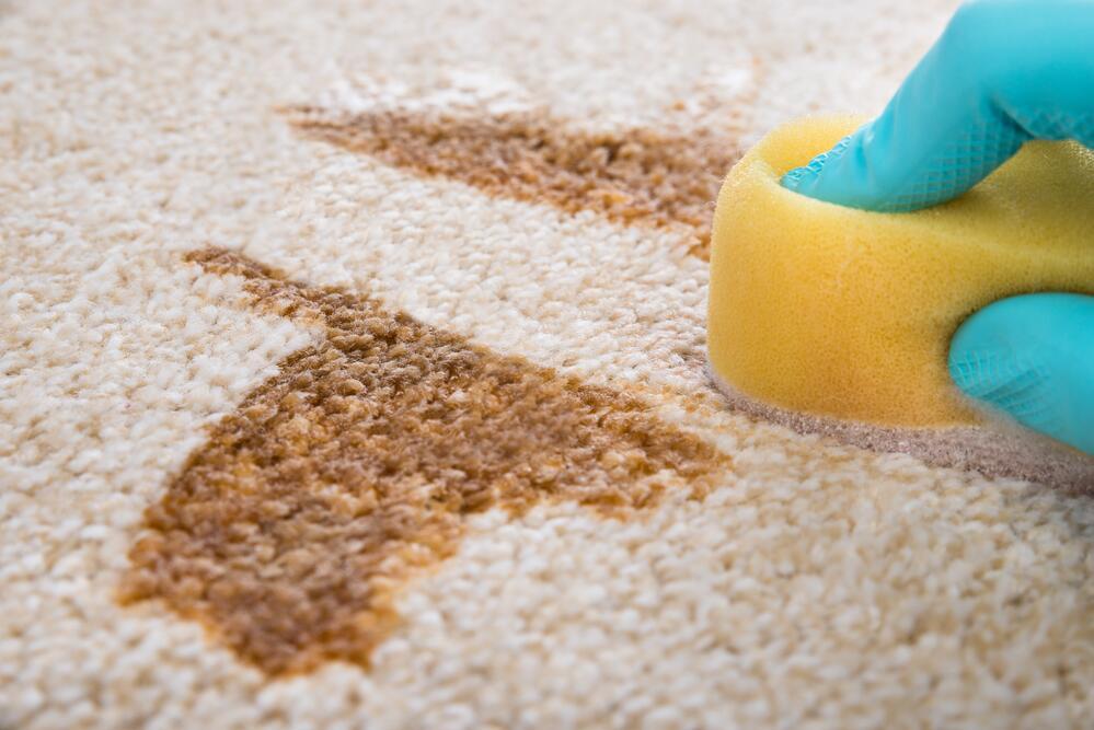 Чистка ковров — это просто?