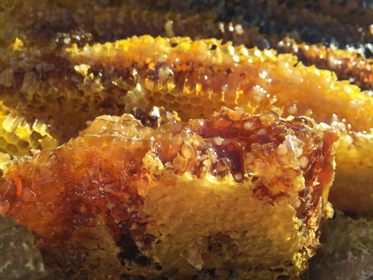 Народная диетология. Настолько ли полезен мед, как принято считать?