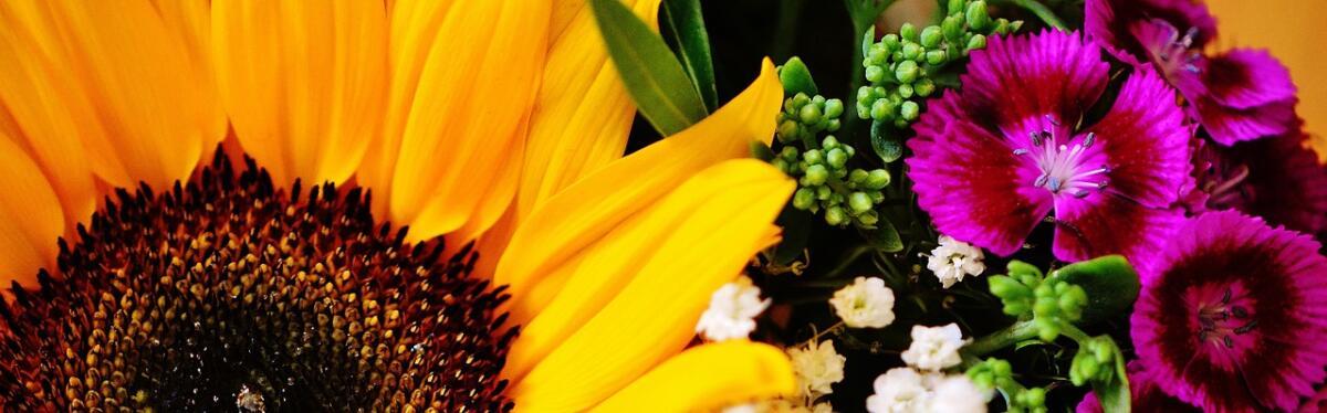 Что такое язык цветов?