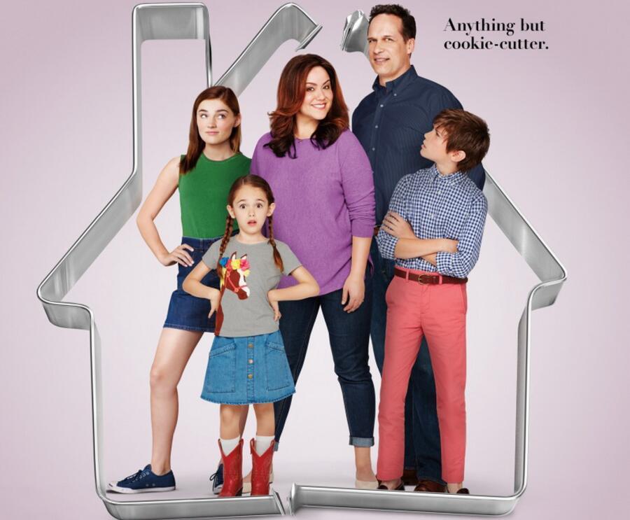 Постер к сериалу «Американская домохозяйка»
