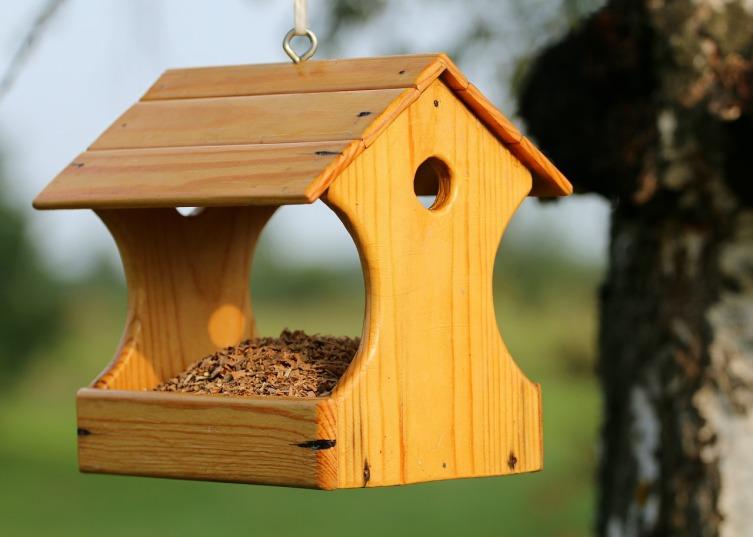 С чего сделать кормушку для птиц