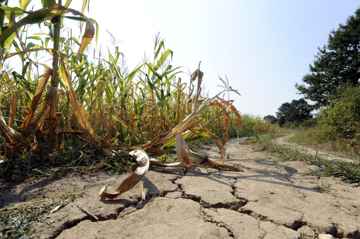 Засуха в Алабаме, осень 2016 г.
