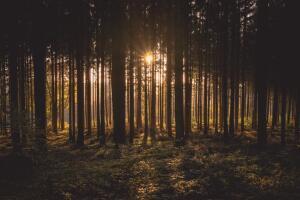 Как избавиться от всего лишнего? Три шага к счастью, «нет» усталости и опустошению