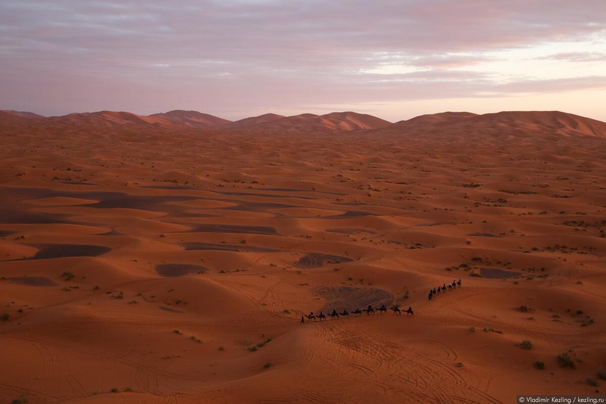 Пустыня Сахара. Из записок путешественника : «Из-за горизонта появилось солнце. Караваны на миг остановились, после чего понуро двинулись дальше...»