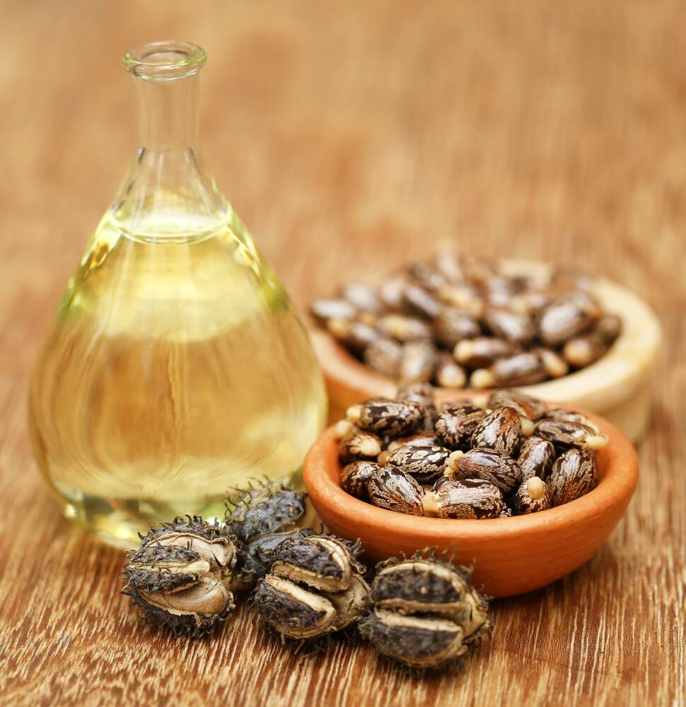 Плоды и семена клещевины, в бутылке касторовое масло