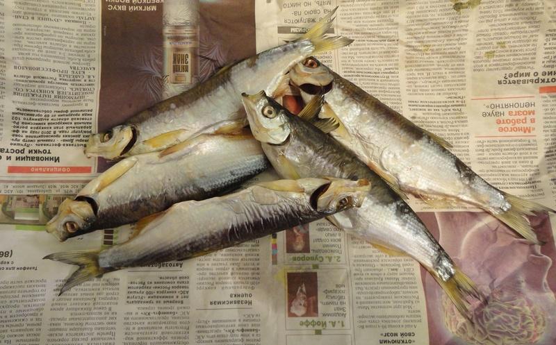 Рыба на газетке - привычное дело...