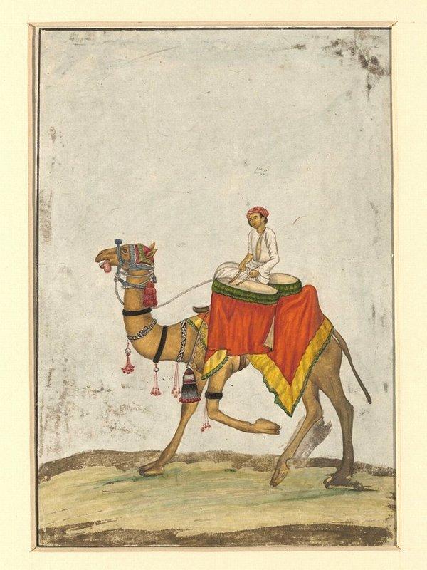 Всадник на верблюде времен эпохи Великих Моголов