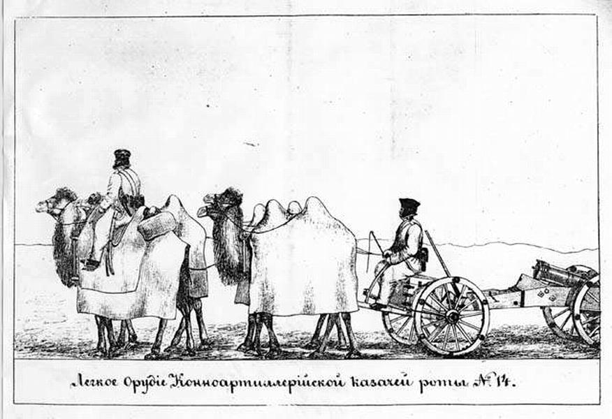 Верблюды тянут орудие во время похода русской армии в Хивинское ханство 1839—1840 гг.