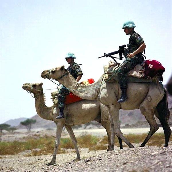 Миротворческая миссия ООН патрулирует Эритрею