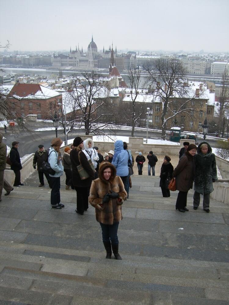 Вид на Будапешт с Замкового холма