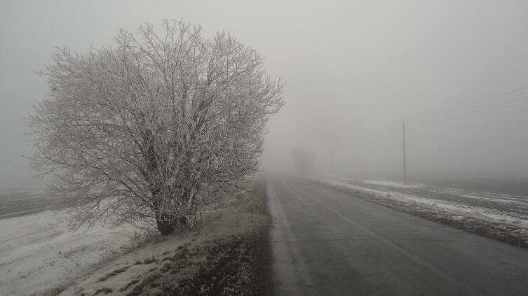 Фото: Красота зимней дороги обманчива. За ней - туман, гололед...