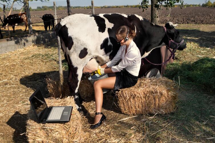 Какими преданиями овеяна история… молока?