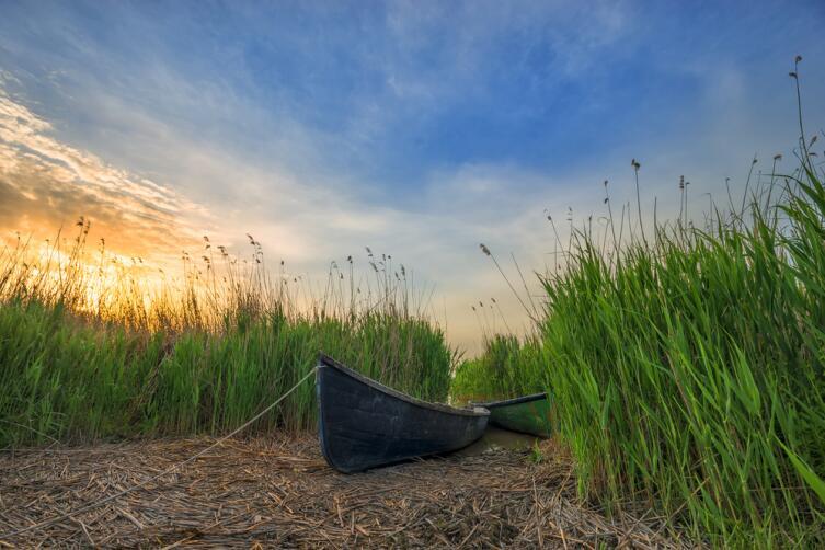 Как изменить свою жизнь? Одиннадцать правил простого дня