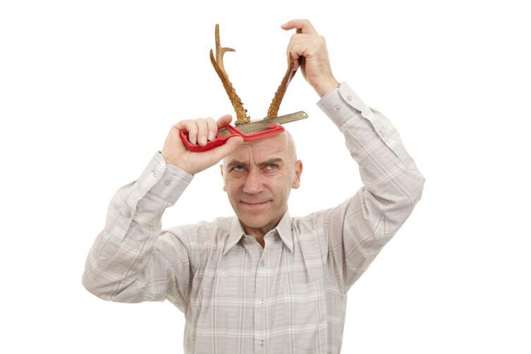 Как вы смотрите на то, что у вас есть рога? …Что, у вас их нет?.. А я докажу!.. «Бред!» — скажете вы. А я скажу — «Софистика!», и докажу.