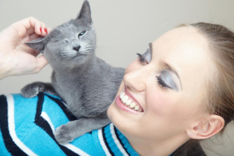 Как кошки рассказывают людям о своей любви?
