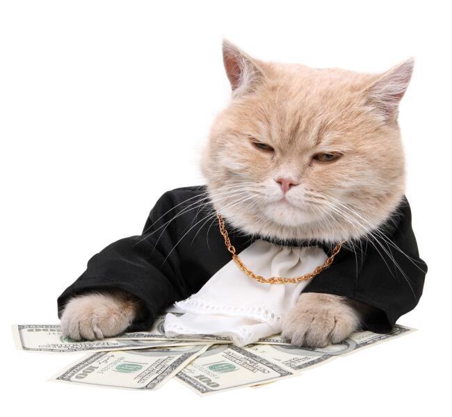 Зачем людям нужно много денег?
