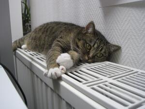 Как можно организовать отопление загородного дома?