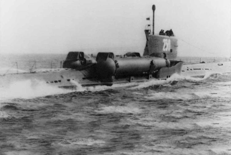 Подводная лодка проекта 644, однотипная С-80