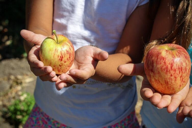 Что такое пост и можно ли поститься детям?