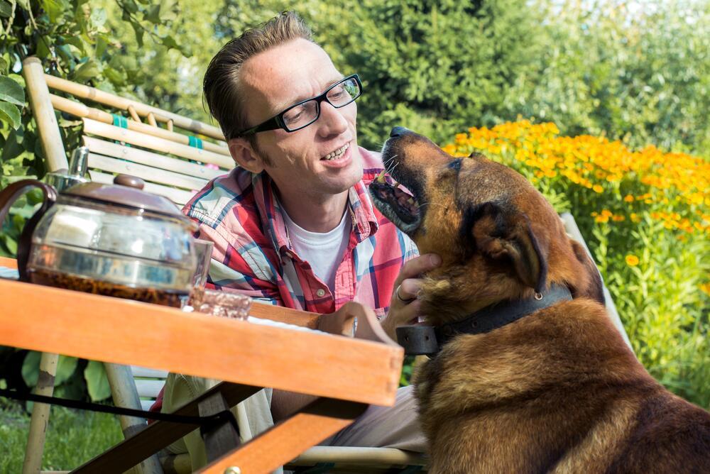 Как отвадить собак от цветников?