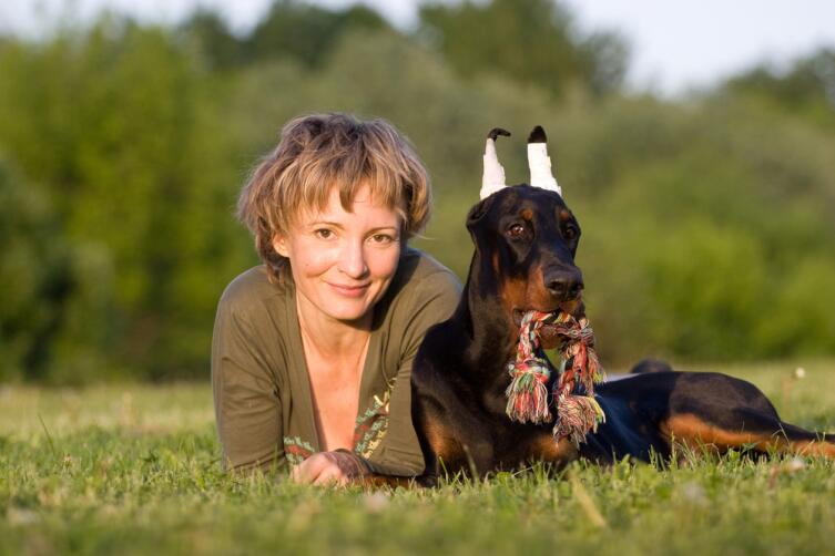 Как давать лекарства кошкам и собакам?