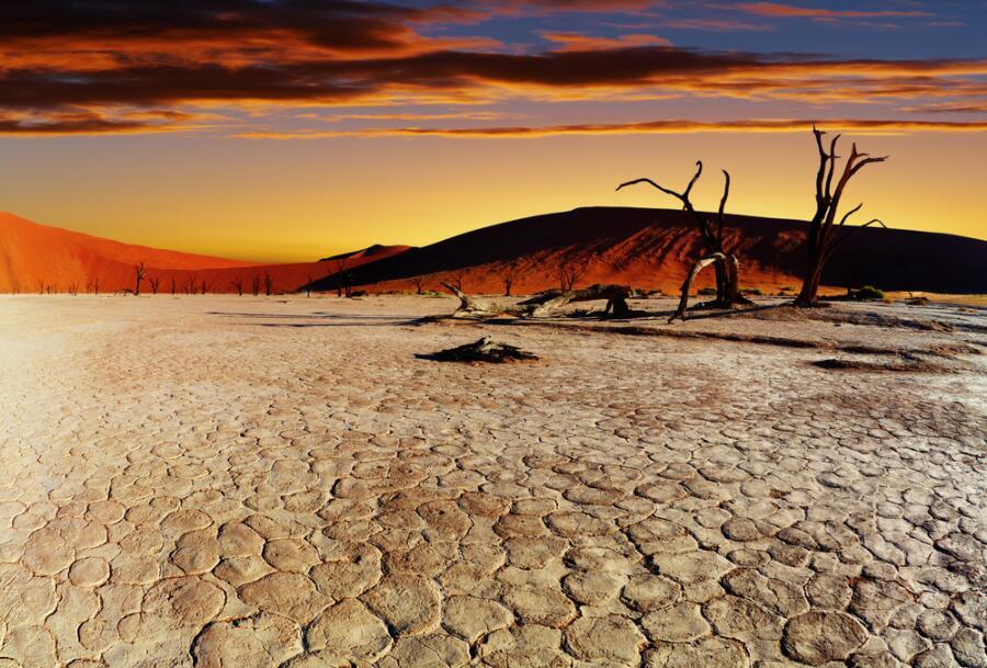 О чём поют пески пустыни Намиб? 1. Живые камни и другие чудеса
