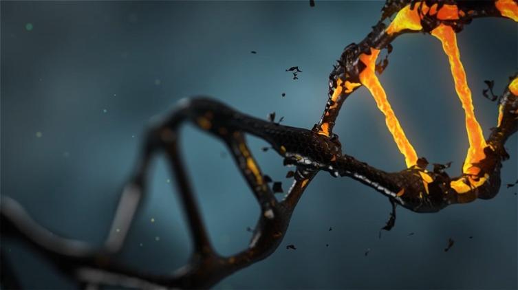 Международный день ДНК. Как создать биокомпьютер?
