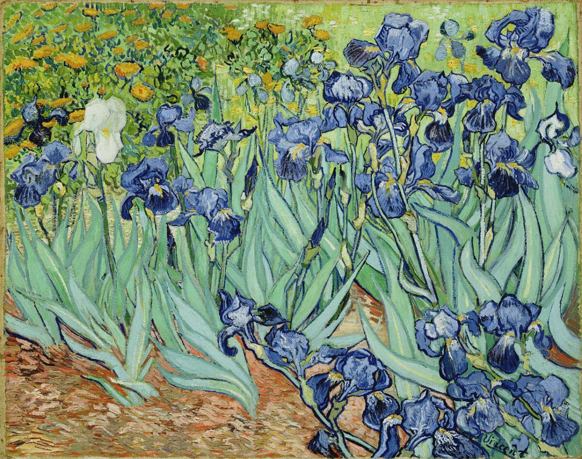 Ван Гог, «Ирисы», 1889 г.