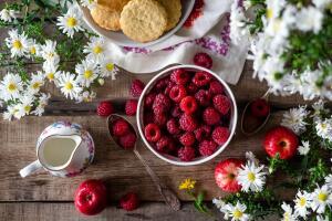 Каким бывает пищевое поведение? Мифы и варианты сопротивления