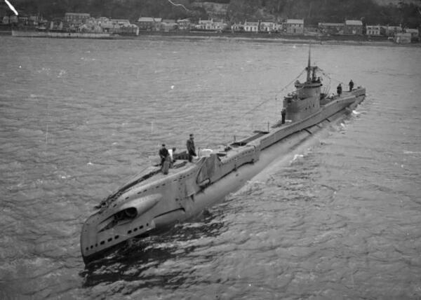 Как олень путешествовал на подводной лодке?