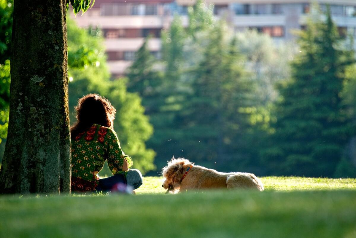 Как стать счастливым? 15 способов изменить жизнь