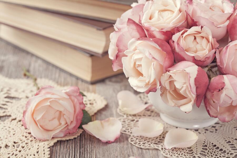 Как спасти комнатную розу от болезней и вредителей?
