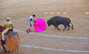 Какой испанский город первым отказался от корриды, или Что такое тавромахия? Часть 1, доисторическая