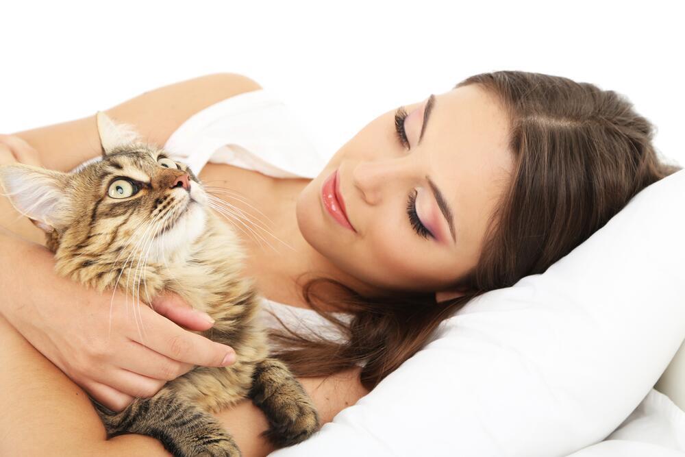 Братья наши меньшие. Почему кошки мурлыкают?