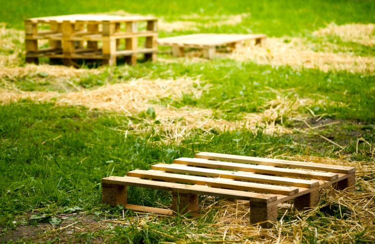 Хороши ли грядки из паллетов? Новаторство в огороде