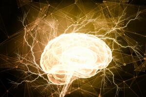 Хосе Дельгадо - «тореадор» мозга, пророк или талантливый нейрохирург? Электричество против шизофрении