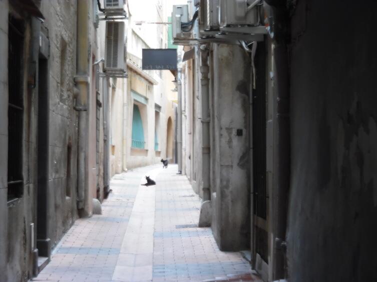 На улицах Перпиньяна царит особая атмосфера