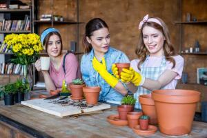 Зачем нужны растения в городских квартирах?