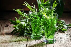 Как вырастить эстрагон и приготовить из него вкусный напиток?