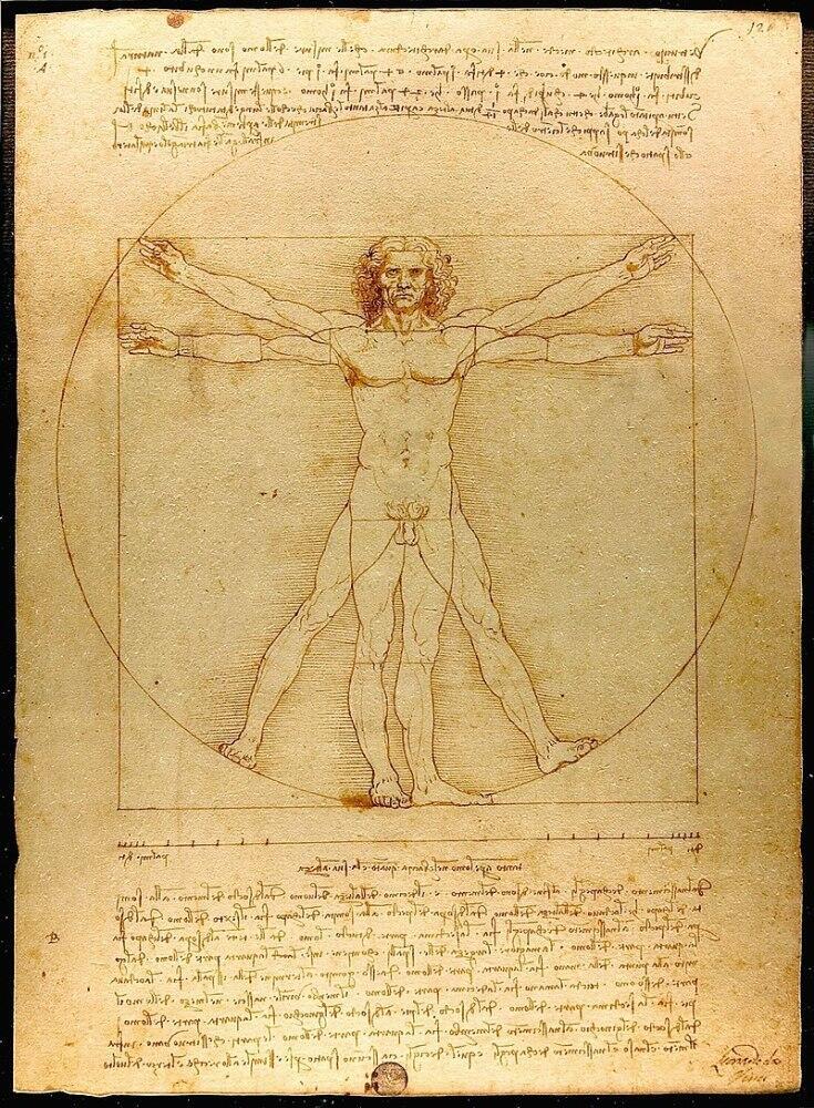 Витрувианский человек— золотое сечение в изображении человека