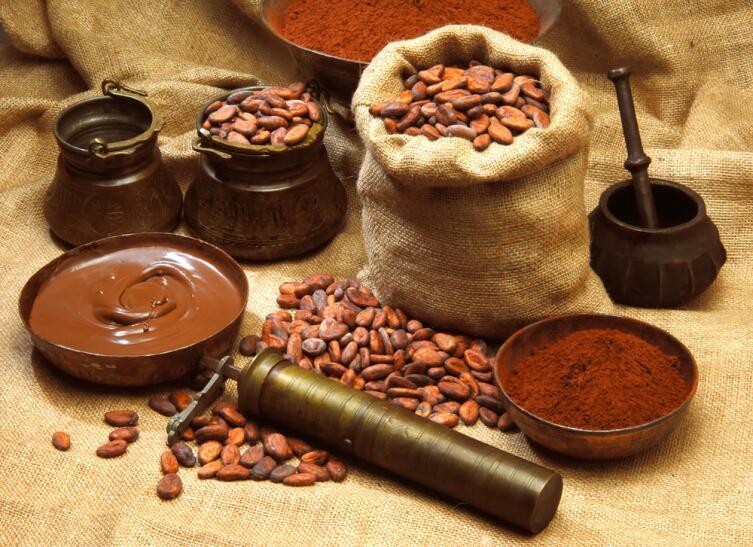 Какао-бобы - Theobroma cacao. Теоброма в переводе с латыни — «пища богов»