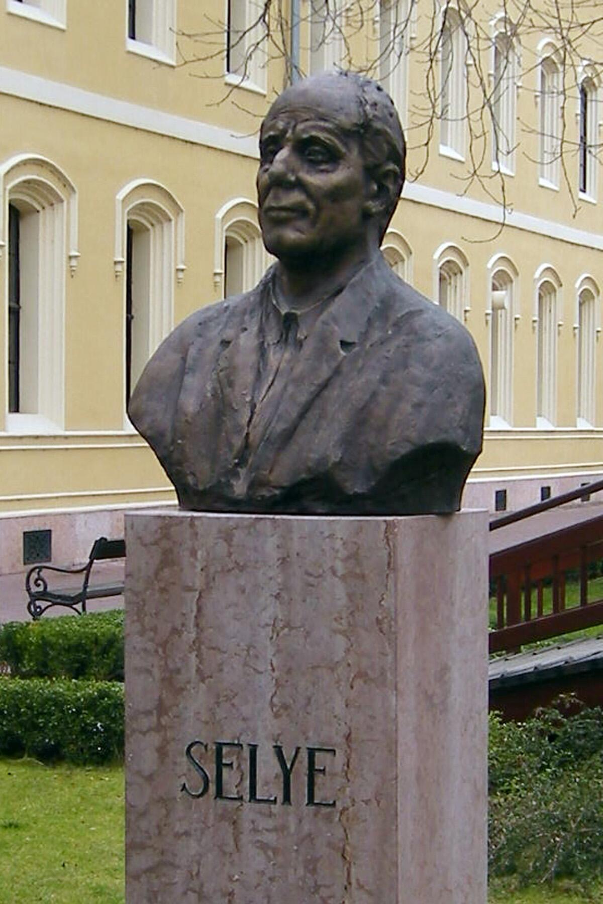 Памятник Гансу Селье
