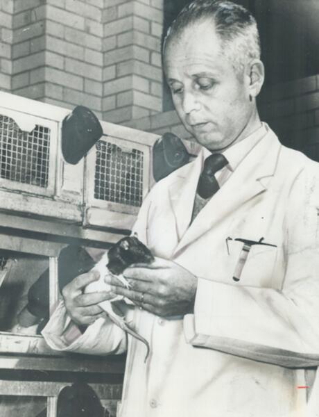 Ганс Селье в своей лаборатории