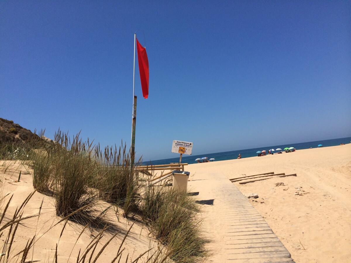 Установлен красный флаг, свидетельствующий о том, что купание запрещено
