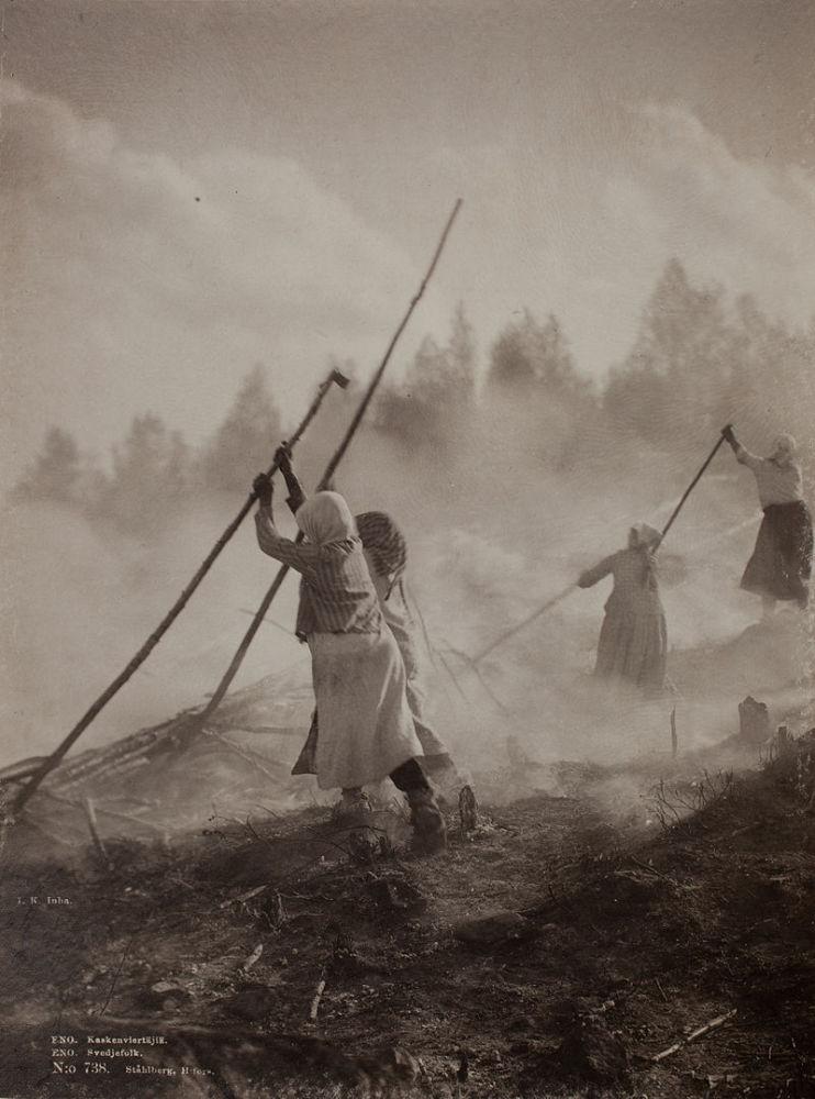 Подсечно-огневая практика земледелия в Финляндии, 1893 год