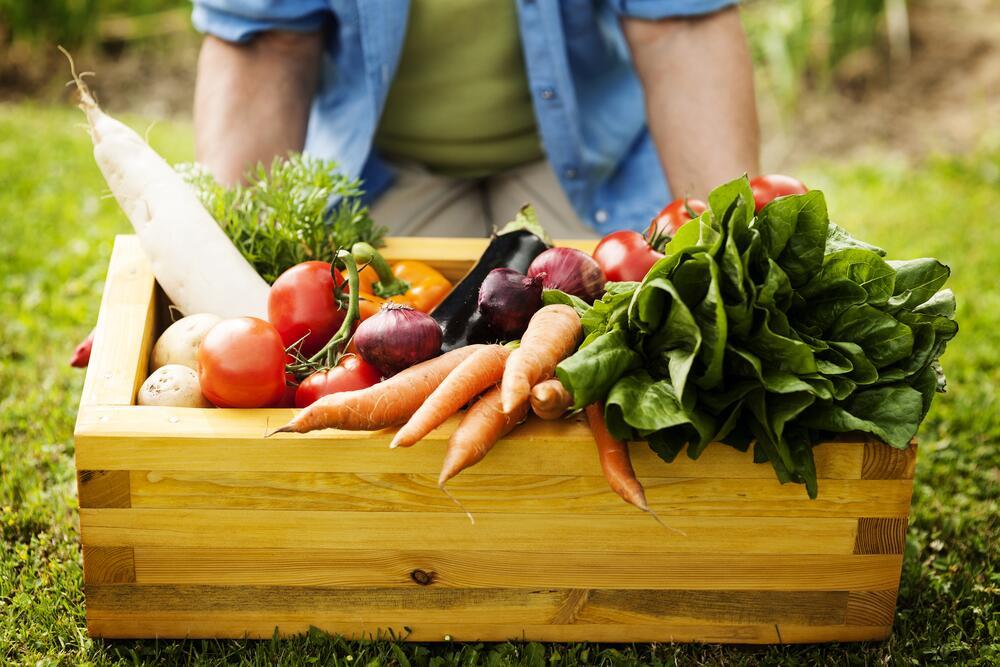 Осенние овощи содержат максимум витаминов